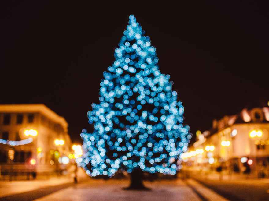city tree bokeh christmas